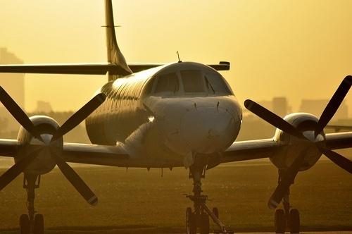 Aerotaxis.